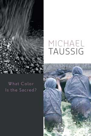 Michael Taussing